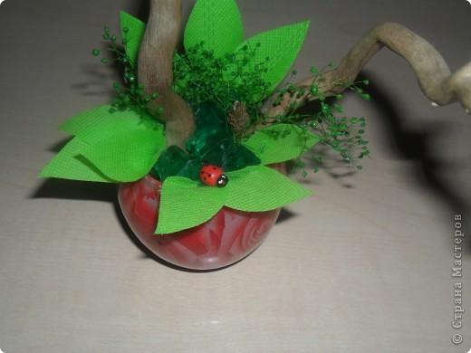 Попросили сделать что-нибудь в подарок женщине. Моей фантазии хватило на вот такой фруктовый топиарий... фото 3