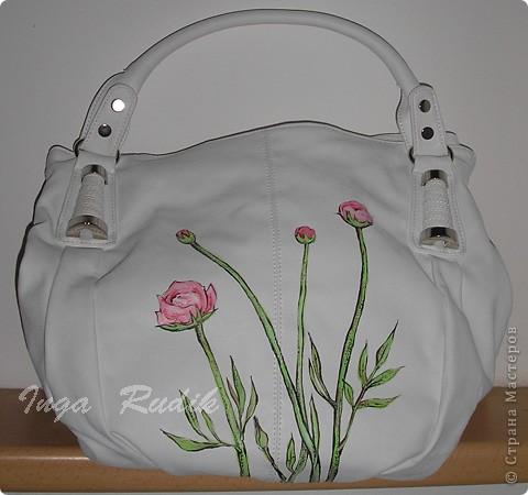 Расписала первую сумку, испытала на прочность - краски держатся отлично. Можно продолжать :) фото 2