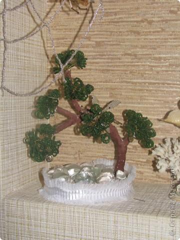 Денежное дерево и стрекоза фото 1