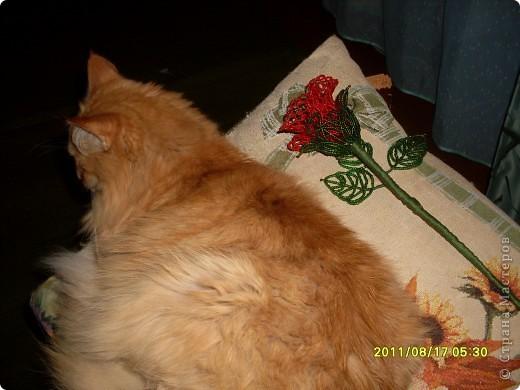 Поделка изделие Бисероплетение Ажурная роза Бисер Нитки Проволока фото 3.