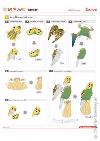Объемный попугай из бумаги своими руками схема 54