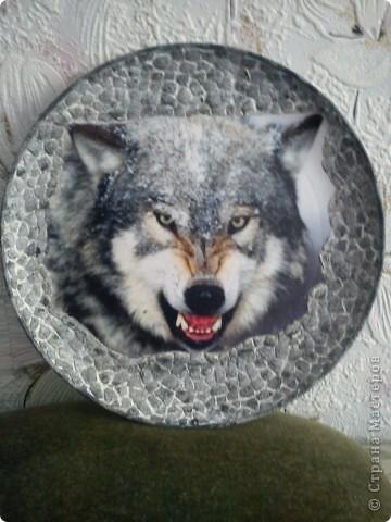 Приветик! Вот такого волка я сделала племяшке, она любительница волков и лошадей.(Лошадок покажу позже). Пластиковая тарелка, распечатка с инета, скорлупка, акрил и все.... фото 1