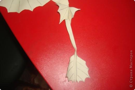папа дракон фото 3