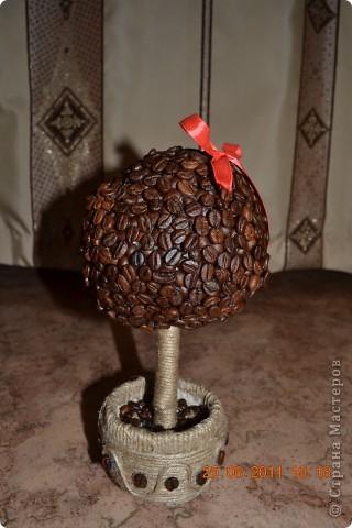 долго я мечтала о таком дереве и вот случилось чудо))))))))  фото 1