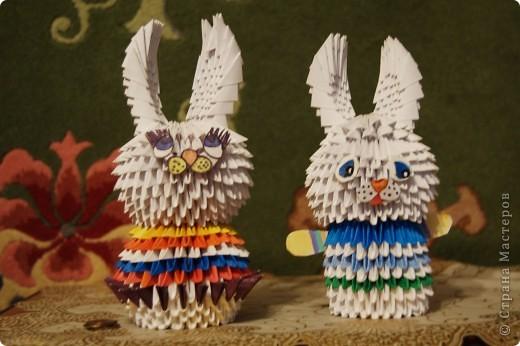 Мои зайчата фото 1