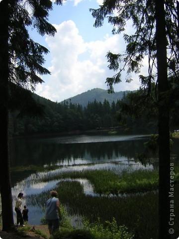 Дорогие друзья!! Приглашаю вас посетить удивительный уголок Карпат- Синевир.  Синевир - самое большое и одно из самых красивых горных озер Карпат. фото 5