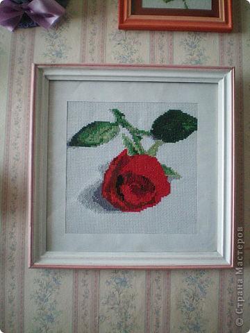 """Больше всего люблю вышивать цветы.  """"Лилия"""" фото 3"""