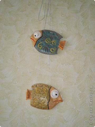 Цветочная рыбка фото 7