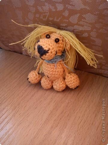 львёнок фото 2