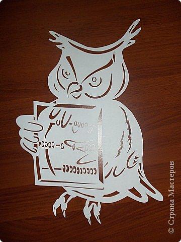 Это мудрая сова- символ знания. фото 1