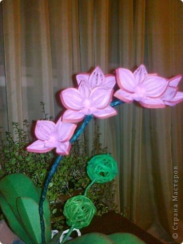 Всем доброго времени суток уважаемые мастерицы!!! Вот такая орхидея получилась коллеге в подарок. Спасибо всем производителям орхидей))))) в нашей стране. Насмотрелась фото перед изготовлением своей. Жаль. что телефон не передаёт настоящих цветов. Спасибо всем. кто зашёл в гости. Всем творческих успехов!!!! фото 2