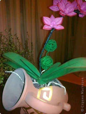 Всем доброго времени суток уважаемые мастерицы!!! Вот такая орхидея получилась коллеге в подарок. Спасибо всем производителям орхидей))))) в нашей стране. Насмотрелась фото перед изготовлением своей. Жаль. что телефон не передаёт настоящих цветов. Спасибо всем. кто зашёл в гости. Всем творческих успехов!!!! фото 3