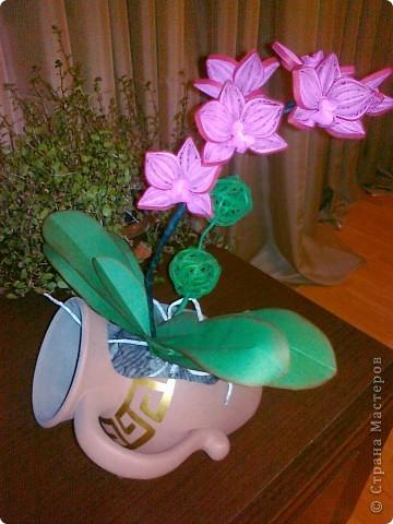 Всем доброго времени суток уважаемые мастерицы!!! Вот такая орхидея получилась коллеге в подарок. Спасибо всем производителям орхидей))))) в нашей стране. Насмотрелась фото перед изготовлением своей. Жаль. что телефон не передаёт настоящих цветов. Спасибо всем. кто зашёл в гости. Всем творческих успехов!!!! фото 4