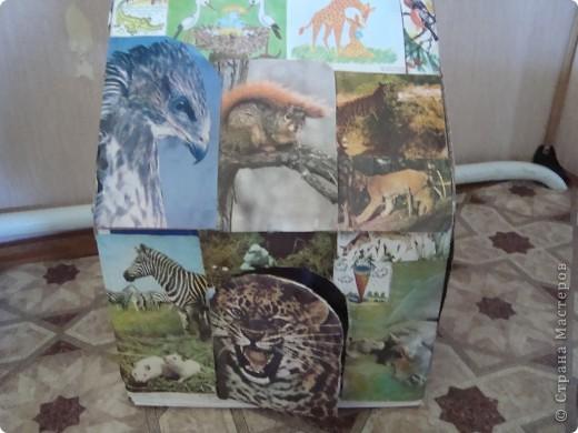 домик для кошек фото 1