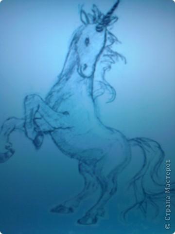 Мои лошади. фото 1