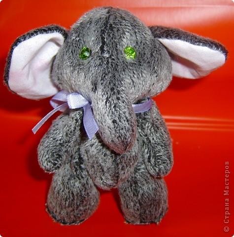 Слоник мохнатый,при звуках диско-теряет волю. фото 1