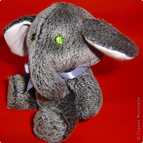 Слоник мохнатый,при звуках диско-теряет волю. фото 5