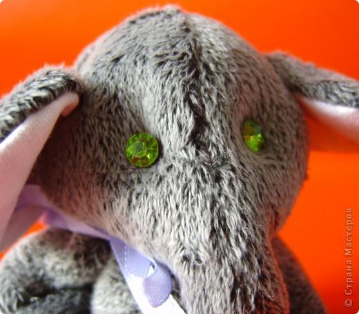 Слоник мохнатый,при звуках диско-теряет волю. фото 7