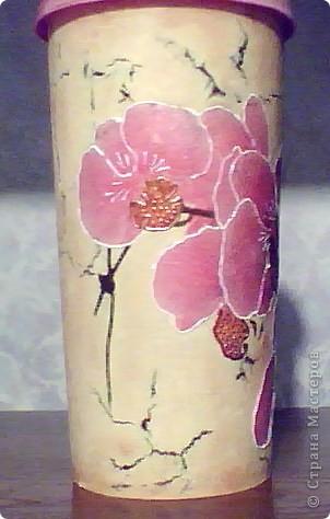 О простоте и блеске орхидей фото 1