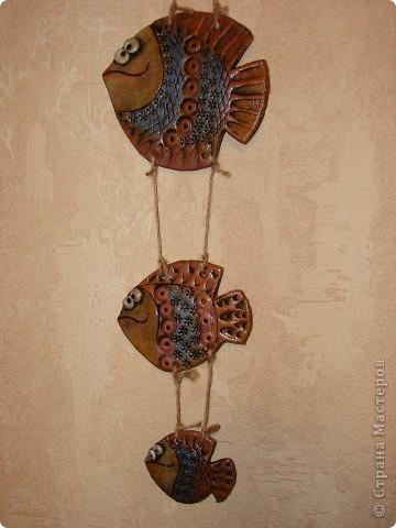 Рыбса-бабочка фото 3