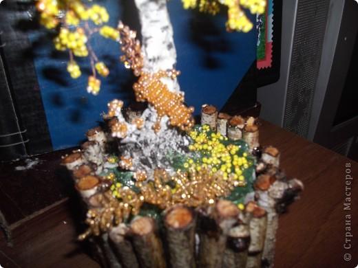Осенняя березка фото 2