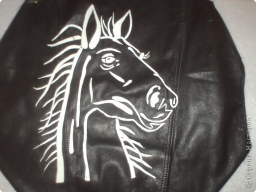 Узнать о лошадках всё. Полюбоваться красотой лошадки. Выбрать фотографию. Сделать трафарет по фотографии.  фото 2