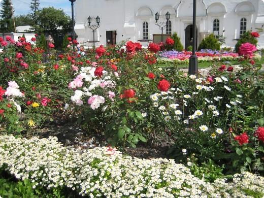Я уже показывала вам Свято-Троицкий мужской монастырь. Но тогда я была там в начале лета. И такого буйного цветения там ещё не было. фото 8