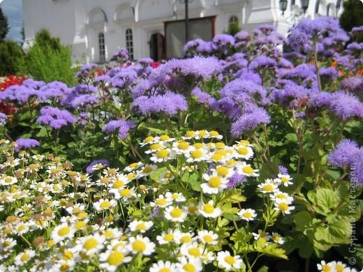 Я уже показывала вам Свято-Троицкий мужской монастырь. Но тогда я была там в начале лета. И такого буйного цветения там ещё не было. фото 9