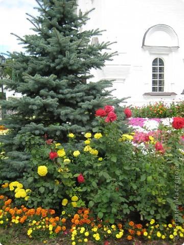 Я уже показывала вам Свято-Троицкий мужской монастырь. Но тогда я была там в начале лета. И такого буйного цветения там ещё не было. фото 26