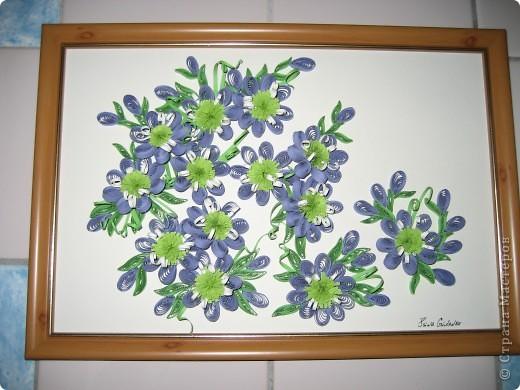 немного похожи цветочки на климатис) как мне показалось)  фото 1