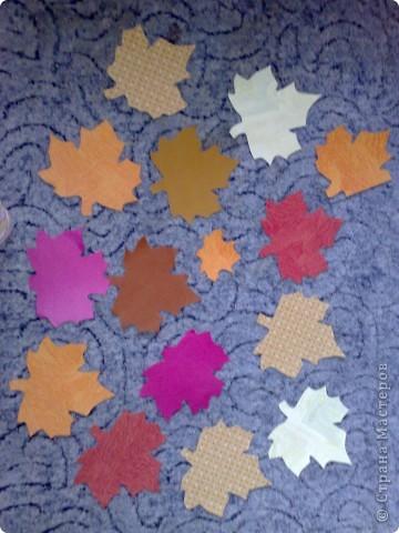 это мои листики на 1 сентября в класс! фото 1