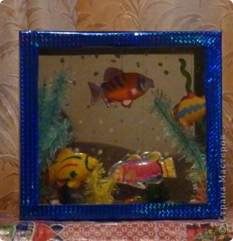 содержание аквариума  фото 2