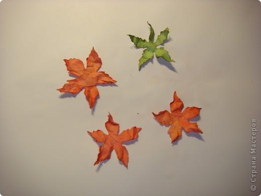 """Я обещала МК цветочка. Такого, как на этой открытке: http://stranamasterov.ru/node/229115 Выполняю обещание. Для изготовления этого цветка нам понадобятся следующие материалы: бумага двух цветов - для цветочка и листика ( сейчас у меня бумага собственного изготовления, а на открытке - акварельная), шнурочек и гуашь для тычинок, вода (в стаканчике или в спрее), прищепки (можно заменить скрепками), ножницы, клей. Еще забыла сфотографировать пинцет и лак бесцветный для ногтей """"Быстрая сушка"""".  фото 7"""