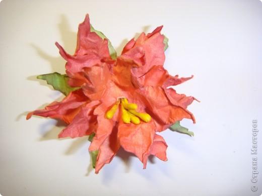 """Я обещала МК цветочка. Такого, как на этой открытке: http://stranamasterov.ru/node/229115 Выполняю обещание. Для изготовления этого цветка нам понадобятся следующие материалы: бумага двух цветов - для цветочка и листика ( сейчас у меня бумага собственного изготовления, а на открытке - акварельная), шнурочек и гуашь для тычинок, вода (в стаканчике или в спрее), прищепки (можно заменить скрепками), ножницы, клей. Еще забыла сфотографировать пинцет и лак бесцветный для ногтей """"Быстрая сушка"""".  фото 13"""