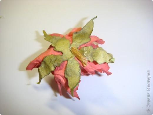 """Я обещала МК цветочка. Такого, как на этой открытке: http://stranamasterov.ru/node/229115 Выполняю обещание. Для изготовления этого цветка нам понадобятся следующие материалы: бумага двух цветов - для цветочка и листика ( сейчас у меня бумага собственного изготовления, а на открытке - акварельная), шнурочек и гуашь для тычинок, вода (в стаканчике или в спрее), прищепки (можно заменить скрепками), ножницы, клей. Еще забыла сфотографировать пинцет и лак бесцветный для ногтей """"Быстрая сушка"""".  фото 14"""