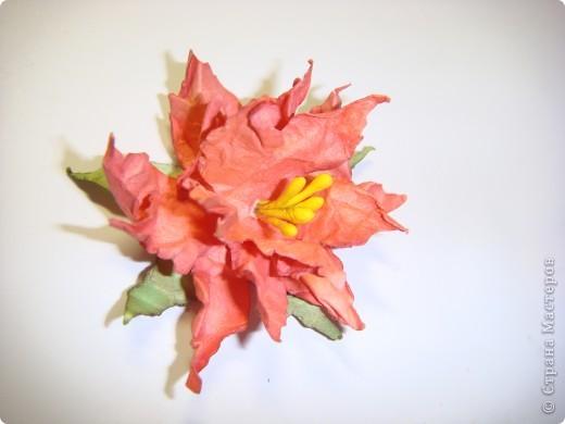 """Я обещала МК цветочка. Такого, как на этой открытке: http://stranamasterov.ru/node/229115 Выполняю обещание. Для изготовления этого цветка нам понадобятся следующие материалы: бумага двух цветов - для цветочка и листика ( сейчас у меня бумага собственного изготовления, а на открытке - акварельная), шнурочек и гуашь для тычинок, вода (в стаканчике или в спрее), прищепки (можно заменить скрепками), ножницы, клей. Еще забыла сфотографировать пинцет и лак бесцветный для ногтей """"Быстрая сушка"""".  фото 15"""