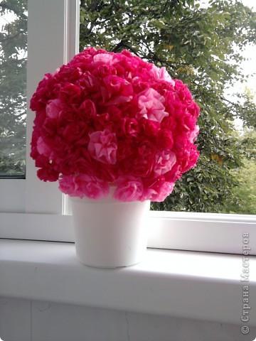 мой цветочный шар фото 1
