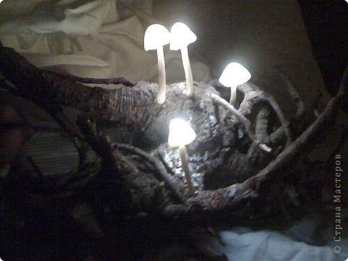 Этот ночник выглядит так, словно вы принесли его из волшебного леса, и теперь он освещает ваши сны. Его можно сделать своими руками. фото 1