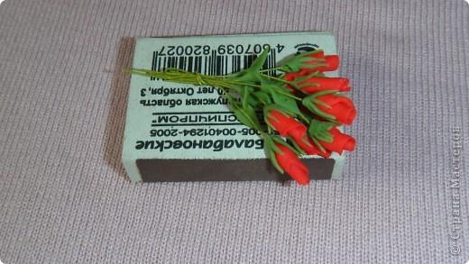 Цветы в миниатюре фото 2