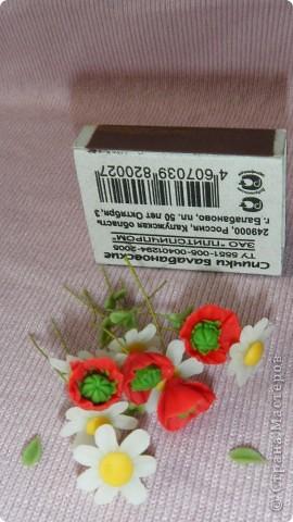 Цветы в миниатюре фото 4