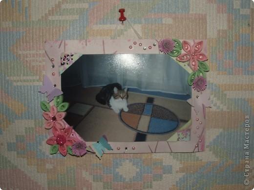 21 августа 2011 моего полосатенького комочка Фросюшки не стало...  Память о ней будет вечна и я решила сделать много разных фоторамок и развесить по всей квартире.  Вот пока первая из них...  фото 1