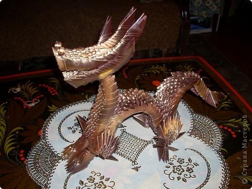 Золотой дракон фото 4