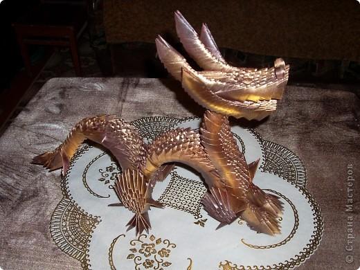 Золотой дракон фото 5
