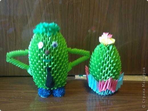 Вот такие кактусы фото 1