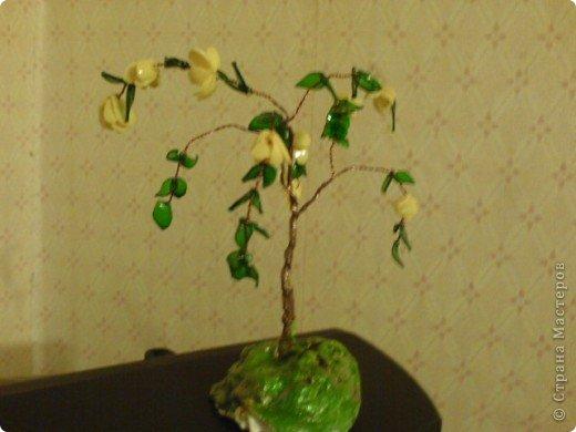 Акация. Листья из пивных бутылок коричневого и зеленого цветов . Сами цветочки - бутылочка из под йогурта. фото 2