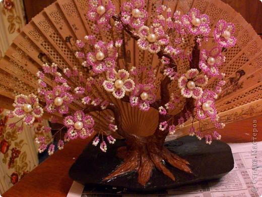Ну вот и я сделала ветку сакуры на фоне веера))) Спасибо  за идею МаринеИгор. Глядя на ваши веера с сакурой и мне захотелось сделать такой. фото 1