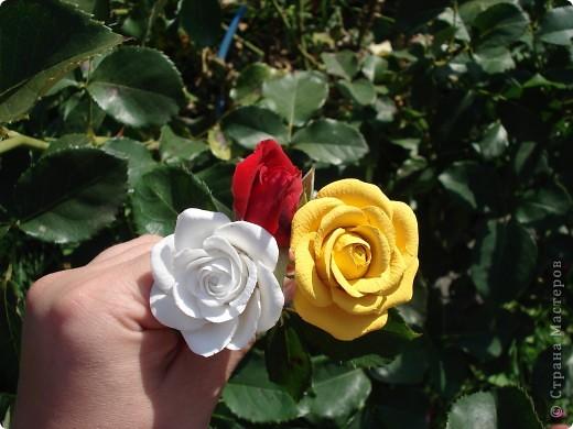 Моя роза в интерьере. Холодный фарфор. Готовая масса. Лепила первый раз. фото 4