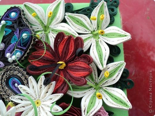 Цветочный сад фото 5
