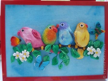 Вот такие попугайчики у меня родились...) фото 1