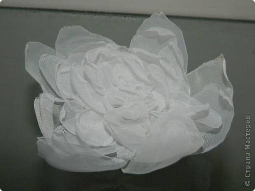 Цветочки!!!  ( работа Кристины) фото 8